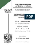 tesis de productividad.pdf