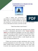 01b - Relatório de Uma Prática Bem-sucedida Na Criação de Uma Entidade Artificial
