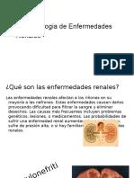 Enfermedades Renales FINAL