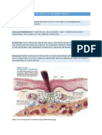Inflammatory Process