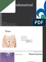 Ciclo Endometrial