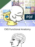 Central Nervous System Malignancies