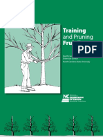 training-and-pruning-fruit-trees-in-north-carolina.pdf