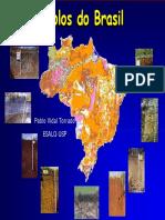 PabloTorrado_ESALQ latossolo ferrico.pdf