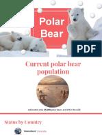 polar bear  pptx
