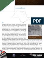 Gleissolos.pdf