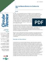 Manejo da Mosca-Branca na Cultura do 2005.pdf