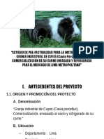 60208146 Proyecto Cuy