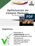Optimización-de-Campos-Maduros-S.-Escalante.pptx