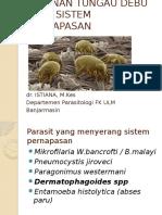 Pneumonitis akibat Pneumocystis carinii | Epidemiology