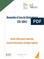 Curso Calculo Integral 100411
