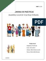 PROYECTO TERMINADO PRACTICUM.pdf