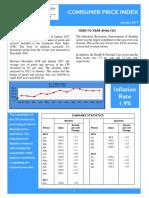 Consumer Price Index -Jan 17