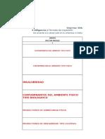 Formato de Inspeccion Para Consignar Los Factores de Riesgo Nvr