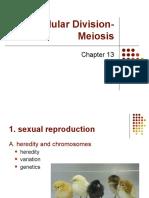 Ch 13 Ppt Lecture Bio1350