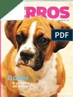RevistaBoxer.pdf