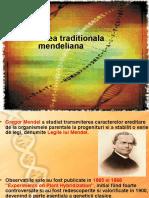 C1.Mendel
