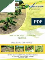 GUIA CULTIVO PLATANO 2011.pdf