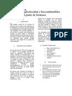 Informe Sobre La Conversión de Residuos de Biomasa en Energía