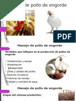 Manejo de Pollo de Engorde
