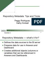 Repository Metadata