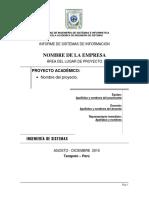 Estructura Del Informe Sistemas de Informacion - Unsm