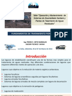 2a-introduccion-lagunas-po-2014.pdf