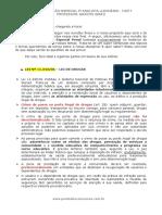 Aula 11 - Legisla-¦ção Especial.pdf