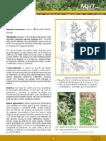 7d989fe767786fd2e04001011e011e12.pdf