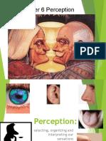 3 - ch 6 perception rg