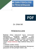 307305083 Anatomi Dan Fisiologi Pencernaan