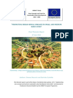 Urban-rural Thematic Report