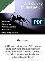 Ant Travelling Salesman Problem