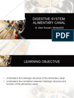 Digestive System(2)