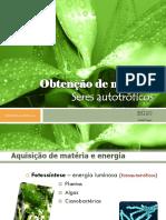Obtenodematria Seresautotrficos 110313193544 Phpapp02