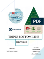 CEM- Triple Bottom Line- Writeup