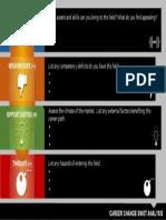 CareerChange_SWOT_Analysis.pptx