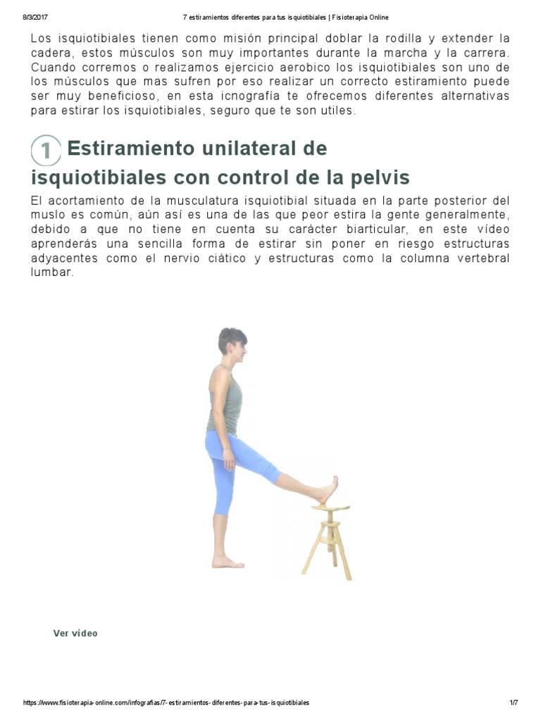Isquiotibiales anatomia