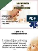 10envejecimientoppt 120703163453 Phpapp01 2