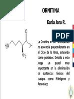 Diapo Ornitina PDF Definitiva