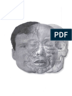 anatomi sobota