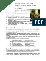 Evaluación de proceso CTA - 1° (1).pdf