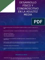 Desarrollo Físico y Congnoscitivo en La Adultez Media