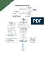 1a. Patofisiologi Stemi & Pci
