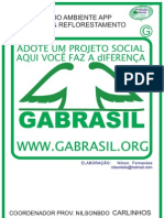 PROJETO RECUPeRaÇAÕ DE APP DE NASCENTES pdf