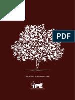 Relatório de Atividades-IPE