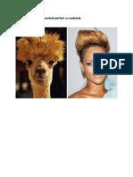 20 de animale care seamănă perfect cu vedete.pdf
