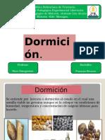 Dormicion