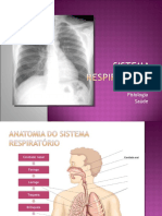 sistema-respiratorio9-cap1112.pps