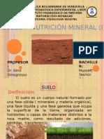 Fiologia Vegetal Suelo y nutricion mineral